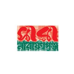 Saranarayanganj24.com